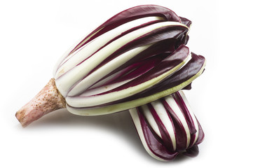 red italian radicchio chicory from Treviso close up