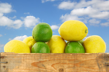 fresh lemons and lime fruit in a wooden box