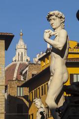 Toscana,Firenze,piazza della Signoria,copia del David