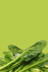 fresh chinese spinach  on a green background with copy space