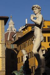 Firenze,David di Michelangelo,copia.