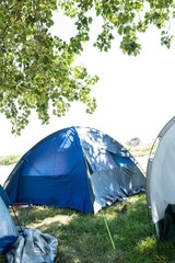Blue tents at festival site