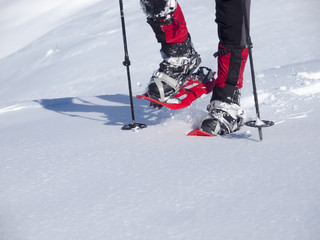 The man in snowshoes.