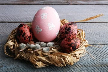 Bird colorful eggs in nest wooden background