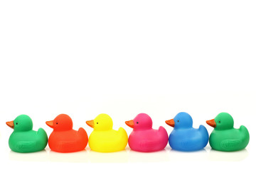 colorful plastic ducklings on a white background