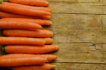Daucus carota Karotte 당근 Havuç Морковь посевная