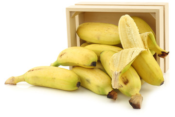 fresh mini bananas and a peeled one  in a wooden box on a white