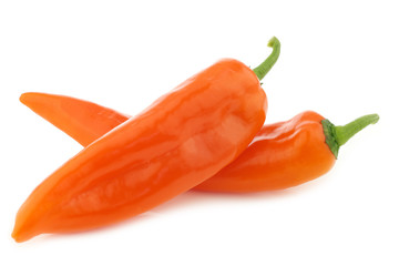 two orange sweet peppers(capsicum) on a white background