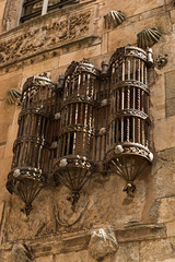 Rejas de la Casa de las Conchas, Salamanca.