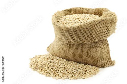 Fotobehang Granen raw organic barley in a burlap bag with an aluminum scoop on a w