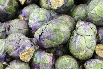 purple brussel sprouts background