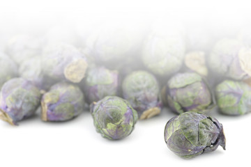 purple brussel sprouts on a white background