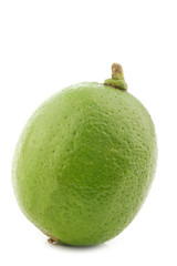 lime fruit on a white background