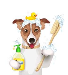 Hund bei der Körperpflege