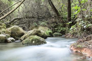 River between stones
