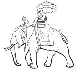 Elephant riding sketch