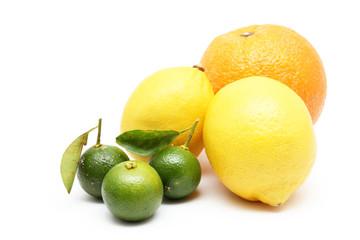Citrus fruits of orange, lemon and lime