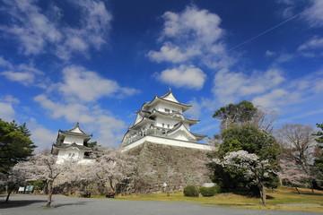 春の伊賀上野城