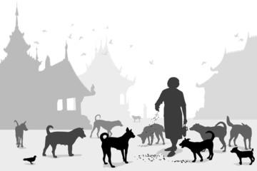 Temple dog carer