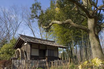 水車小屋と竹藪