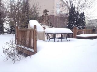 snowfall on patio and garden