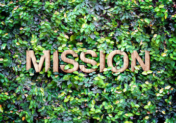 "Eco concept : Wood texture "" Mission "" word icon on green leaves"