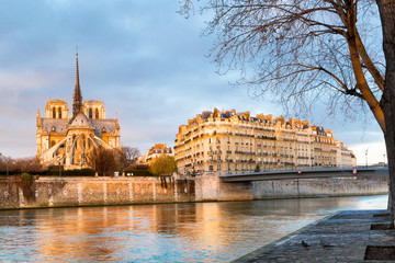 Paris Notre Dame Cathedral in early morning golden sunlight view