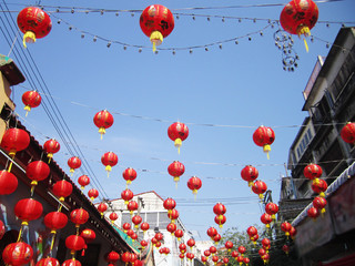 chinese paper lantern in chinese new year festival