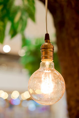 vintage tungsten lightbulbs hanging on tree with bokeh backgroun