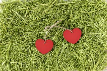 Zwei Herzen auf Kunstgras, Valentinstag, Muttertag, Geburtstag