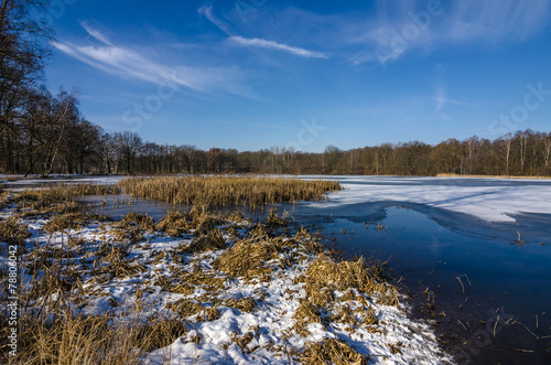 canvas print picture Winter am See