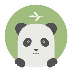 Animal set. Portrait in flat graphics - Panda