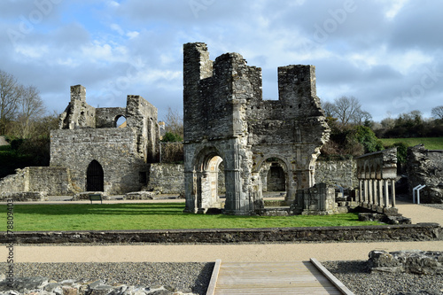 Mellifont Abbey, County Louth. - 78809403