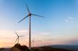 wind farm - 78810897
