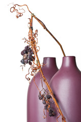 Simple Composition with grape's twig in vase