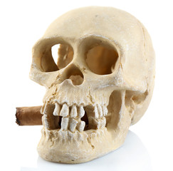 Smoking human scull with cigar in his mouth, isolated on white