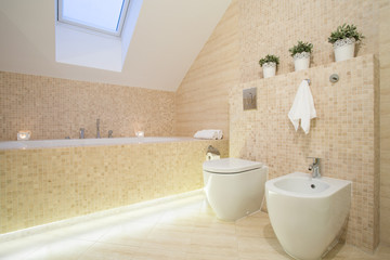 Beautiful bathroom in beige color