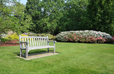 Bench seat in an english park in early Spring