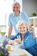 Healthy elderly couple