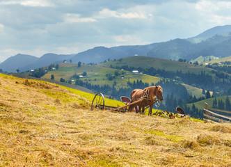 Traditional life of Carpathian mountain