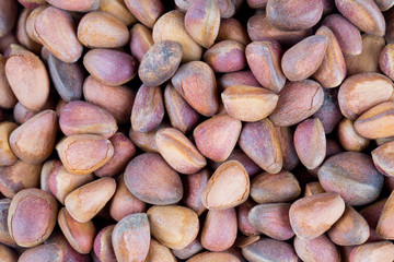 pine nuts background