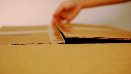 hand open cardboard box. portrait from inside the box. HD