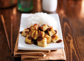 crispy tofu cubes drizzled in teriyaki sauce with rice