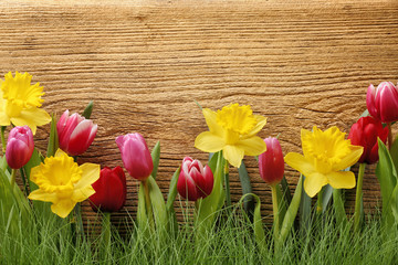 Flower with grass on wood background