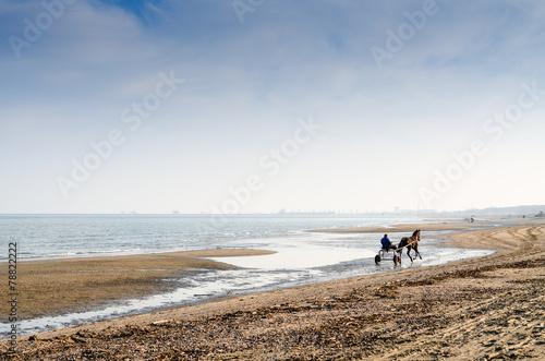 canvas print picture A cavallo in spiaggia