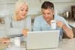 canvas print picture - Happy mature couple using laptop