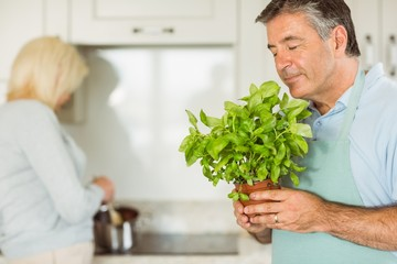 Mature man smiling and smelling basil plant