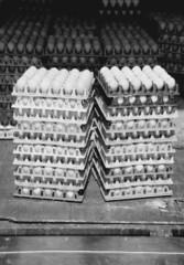 Egg truck. Black and white.