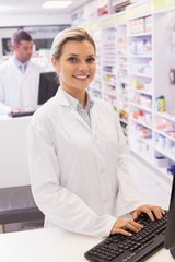 Pharmacist using the computer