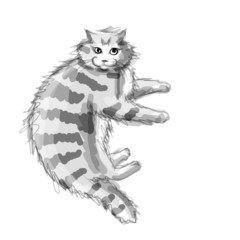 Cute grey cat, sketch for your design